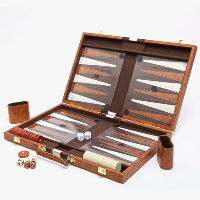 Backgammon case open to show tactile board, counters and dice