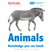 Front cover of Animals book showing a zebra