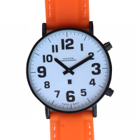 Close up view of the face of the RNIB talking watch