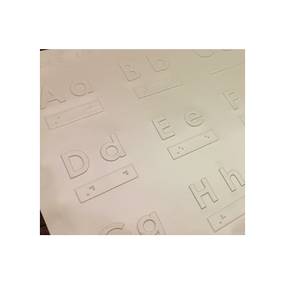 Raised print characters and braille