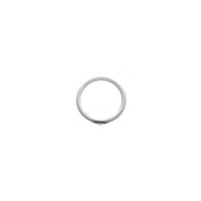 Daylight 22W circular tube two pin