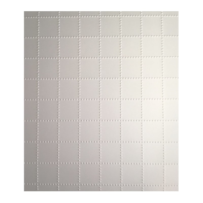 A sheet of Tactile graph paper
