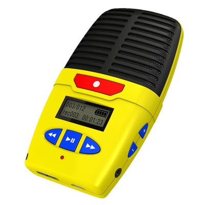 Standalone digital voice recorder