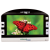 Amigo HD Portable Video Magnifier with a butterfly on screen
